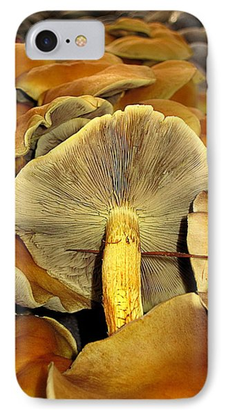 Mushroom Two IPhone Case by John King