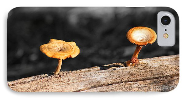 IPhone Case featuring the photograph Mushrooms On A Branch by Donna Greene