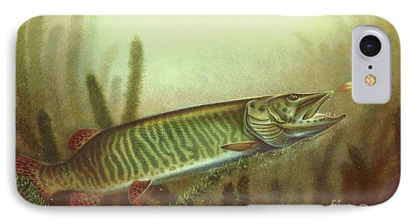 Musky Spinnerbait IPhone Case by Jon Wright