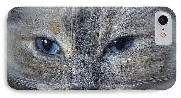 Mustachioed Cat IPhone Case by Karen Stahlros
