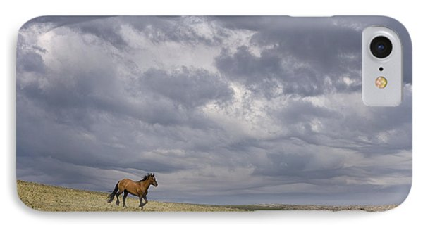 Mustang And Stormy Sky IPhone Case by Jean-Louis Klein & Marie-Luce Hubert
