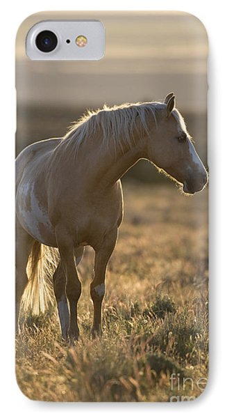 Mustang Mare IPhone Case by Jean-Louis Klein & Marie-Luce Hubert