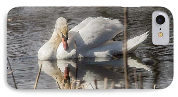 IPhone Case featuring the photograph Mute Swan - 3 by David Bearden