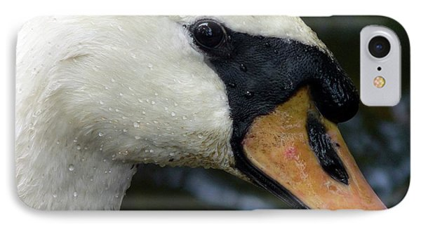 Mute Swan Close-up Phone Case by Al Powell Photography USA