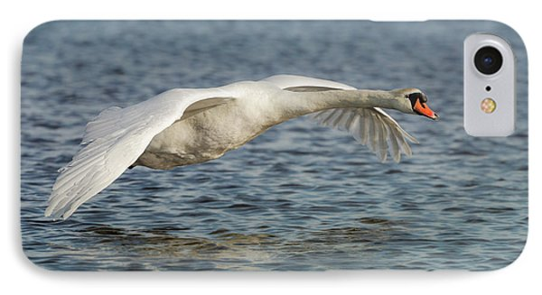 IPhone Case featuring the photograph Mute Swan by Roy McPeak