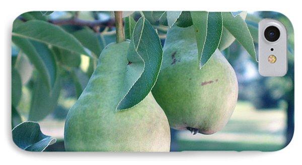 My Brothers Pear Tree Phone Case by Wayne Potrafka