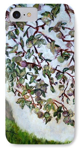 My Daughter's Apple Tree IPhone Case by Aleezah Selinger