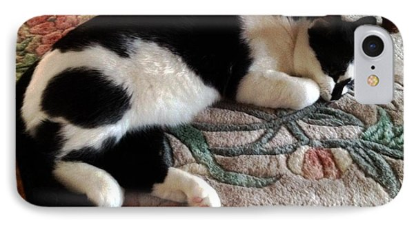 My Sleeping Cat IPhone Case by Vicky Tarcau