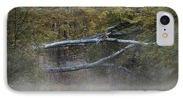 IPhone Case featuring the photograph Mystery In The Fall by Skip Willits