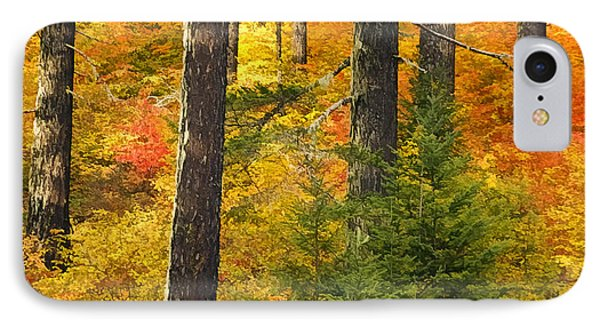 N W Autumn IPhone Case
