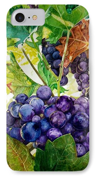 Napa Harvest Phone Case by Lance Gebhardt