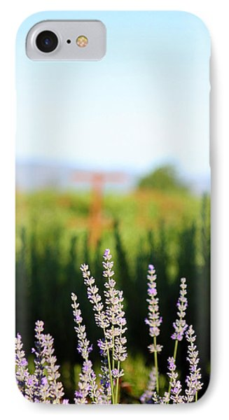 Napa View Phone Case by Ty Helbach