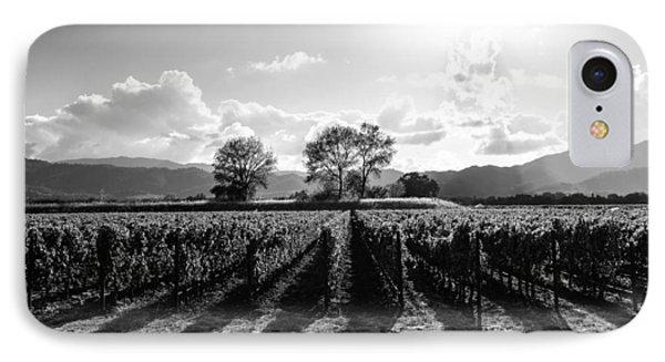 Napa Vineyard B/w IPhone Case by Paul Scolieri