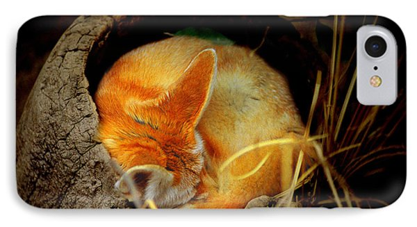 Napping Fennec Fox IPhone Case by Greg Slocum