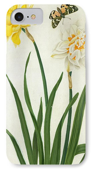 Narcissi And Butterfly IPhone Case