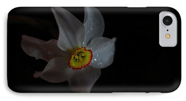 IPhone Case featuring the photograph Narcissus by Susan Capuano