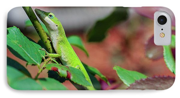 Native Anole IPhone Case