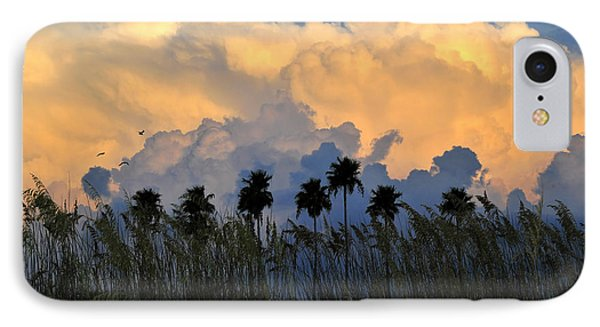 Native Florida Phone Case by David Lee Thompson