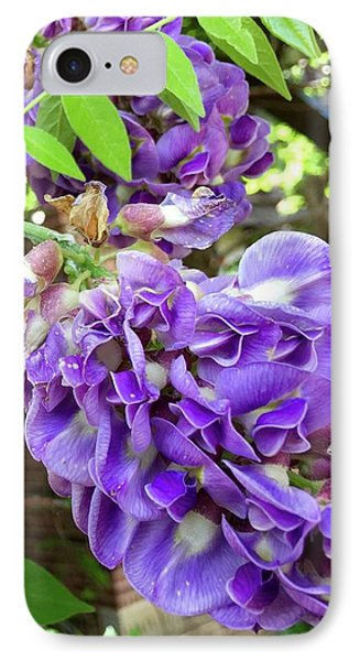 IPhone Case featuring the photograph Native Wisteria Vine II by Angela Annas