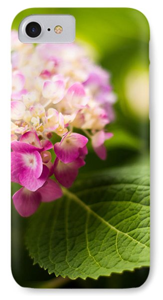 Natural Beauty IPhone Case by Parker Cunningham