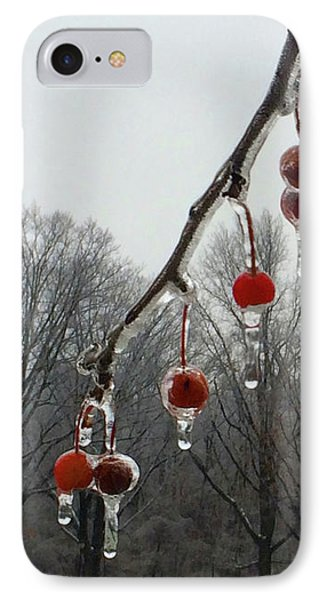 Natural Ornaments In A Frozen Landscape IPhone Case