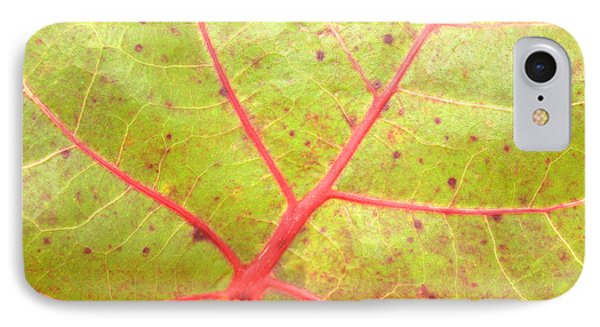 Nature Abstract Sea Grape Leaf Phone Case by Carol Groenen