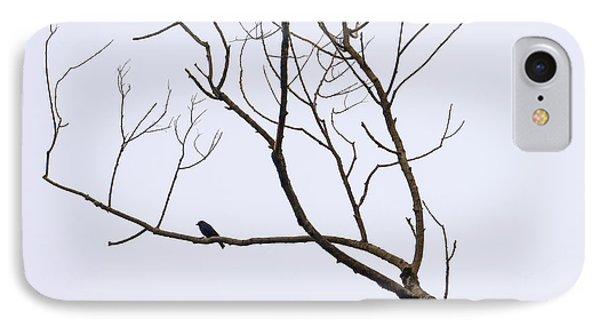 Nature - Bird On Branch 1 IPhone Case by Arthur Babiarz