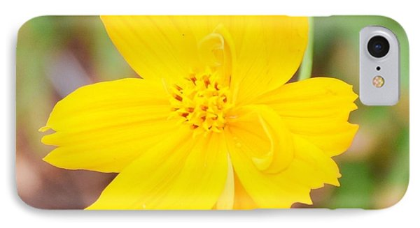 IPhone Case featuring the photograph Nature Colorful Flower Gifts - Yellow by Ray Shrewsberry