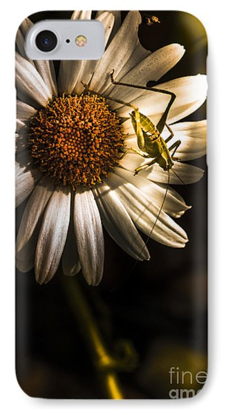 Grasshopper iPhone 7 Case - Nature Fine Art Summer Flower With Insect by Jorgo Photography - Wall Art Gallery