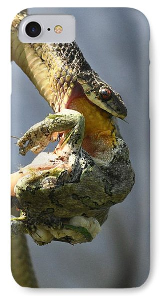 Nature Is Beguiling IPhone Case by Lisa DiFruscio
