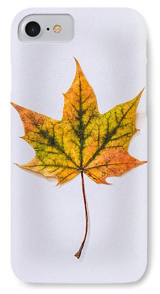 Natures Art IPhone Case by Kate Morton