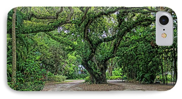 Natures Artwork IPhone Case by HH Photography of Florida
