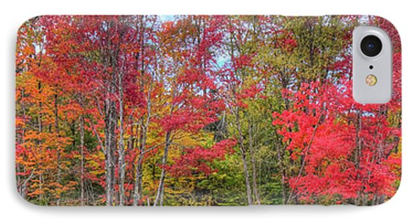 IPhone 7 Case featuring the photograph Natures Autumn Palette by David Patterson