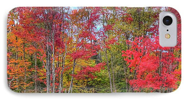 IPhone Case featuring the photograph Natures Autumn Palette by David Patterson
