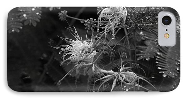 Nature's Decor IPhone Case by Jeanette C Landstrom