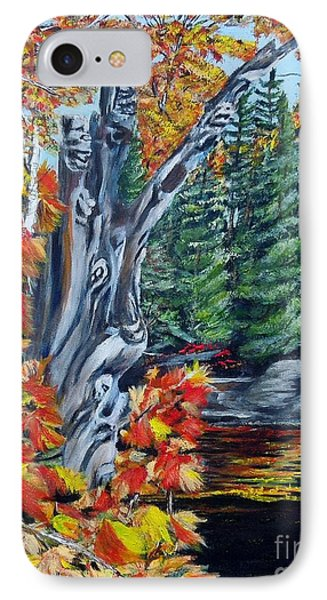 IPhone Case featuring the painting Natures Faces by Marilyn  McNish