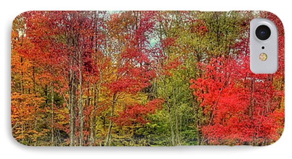 IPhone Case featuring the photograph Natures Fall Palette by David Patterson