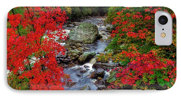Natures Frame IPhone Case