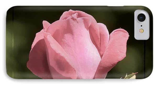 IPhone Case featuring the photograph Nature's Gems by Brenda Bostic