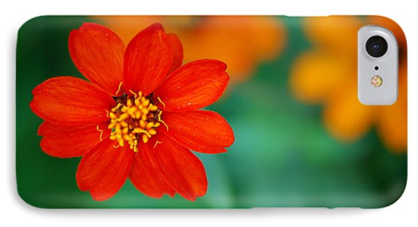 IPhone Case featuring the photograph Nature's Glow by Debbie Karnes