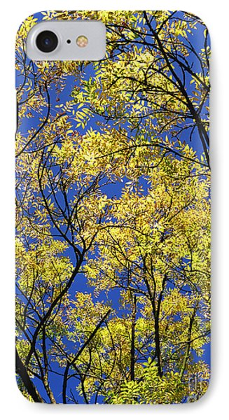 Natures Magic - Original IPhone Case