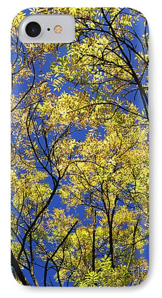 IPhone Case featuring the photograph Natures Magic - Original by Rebecca Harman