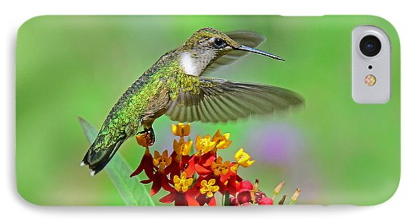 IPhone Case featuring the photograph Nature's Majesty by Rodney Campbell