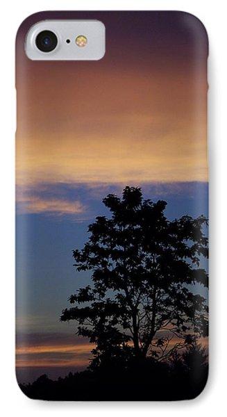 Natures Palette IPhone Case