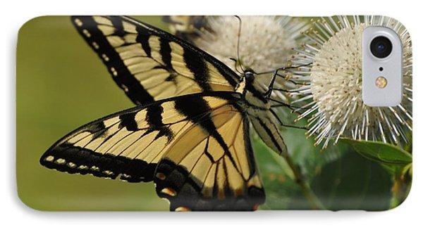 Natures Pin Cushion IPhone Case