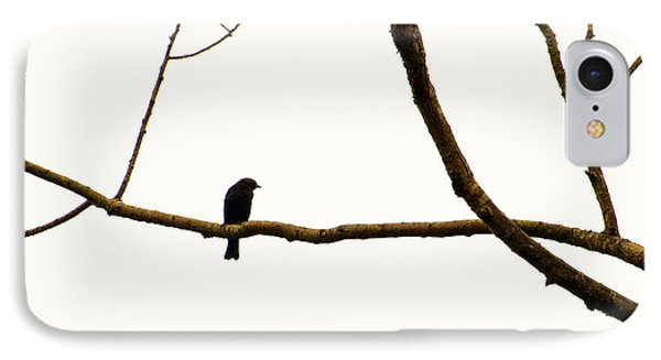 Nature - Bird On A Tree Branch 2 IPhone Case by Arthur Babiarz