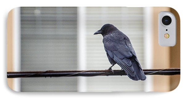 Nature - Crow On Wire IPhone Case by Arthur Babiarz
