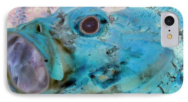 IPhone Case featuring the photograph Nautical Beach And Fish #1 by Debra and Dave Vanderlaan