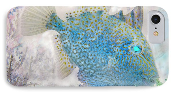 IPhone Case featuring the photograph Nautical Beach And Fish #2 by Debra and Dave Vanderlaan