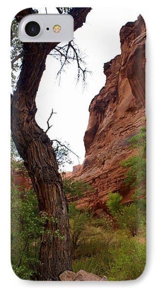 Near Moab 2 Phone Case by Marty Koch